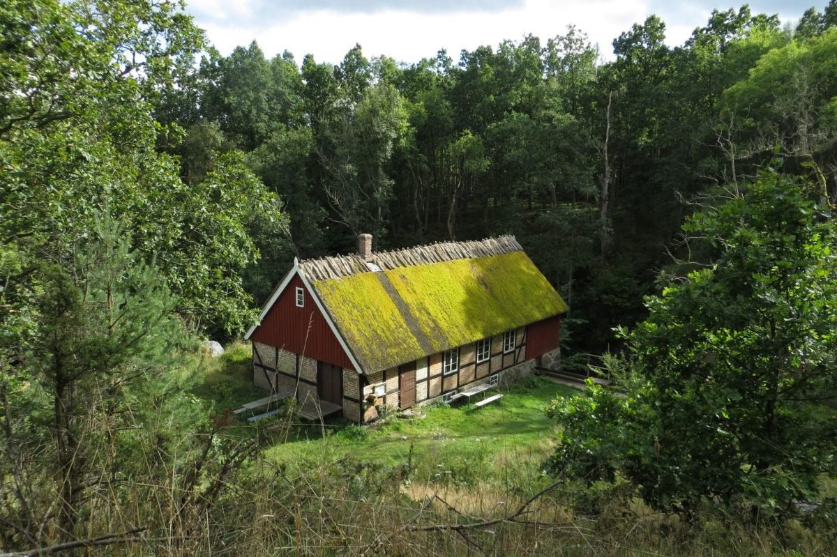 Construcció vista des de dalt, amb la teulada vegetal