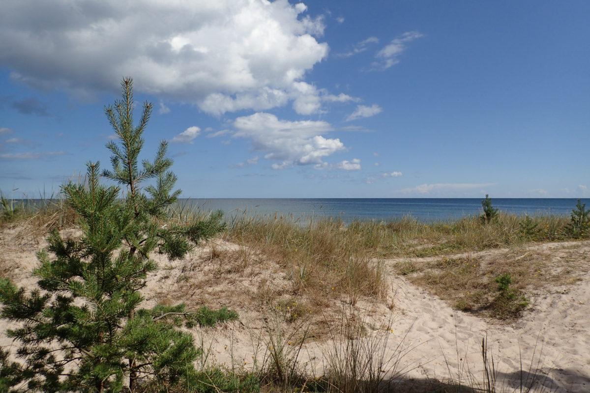 Vista frontal de la platja