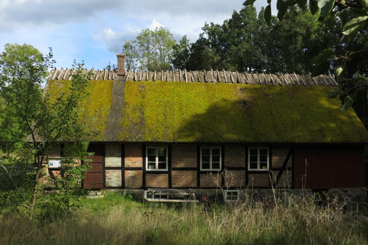 Casa de Skåne amb la teulada vegetal