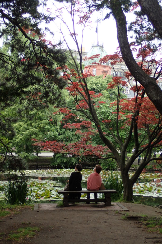 Parc a Sapporo amb dues dones assegudes a un banc mirant amunt