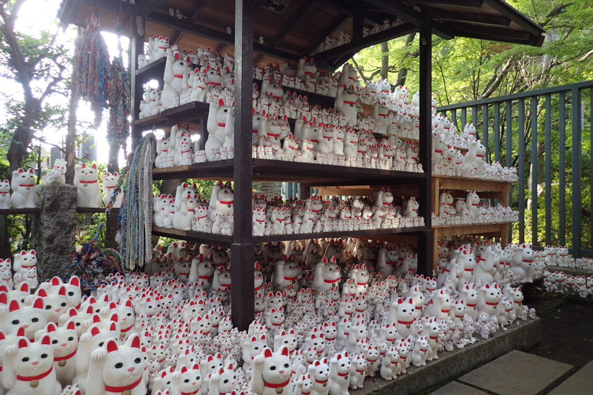 Prestatges plens de maneki neko com a ofrena al temple de Gotokuji
