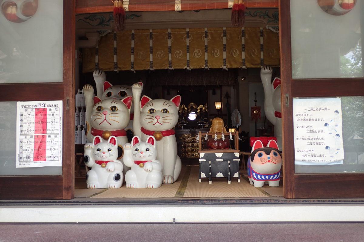 Sala del temple amn diferents figures de gats