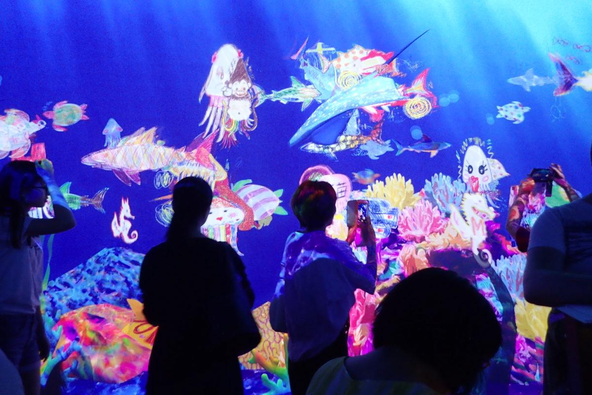 Projecció amb els dibuixos fets pels assistents simulant espècies del fons marí