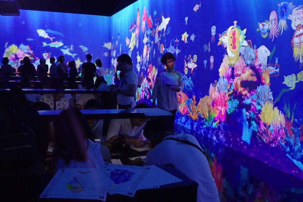 Espai de la projecció amb els dibuixos fets pels assistents simulant espècies del fons marí