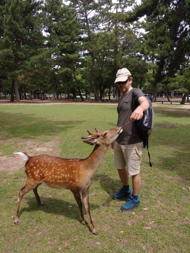 Dani donant una galeta a un cérvol