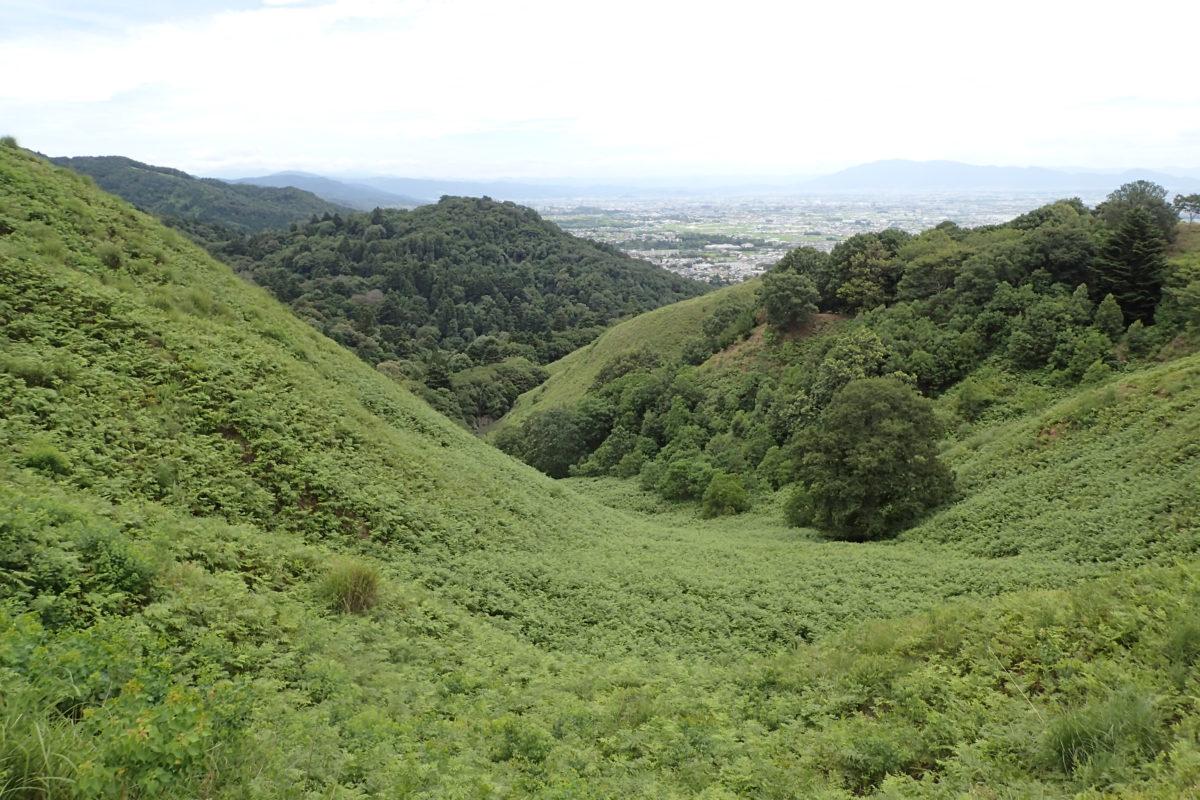 Vista de la vall, completament verda