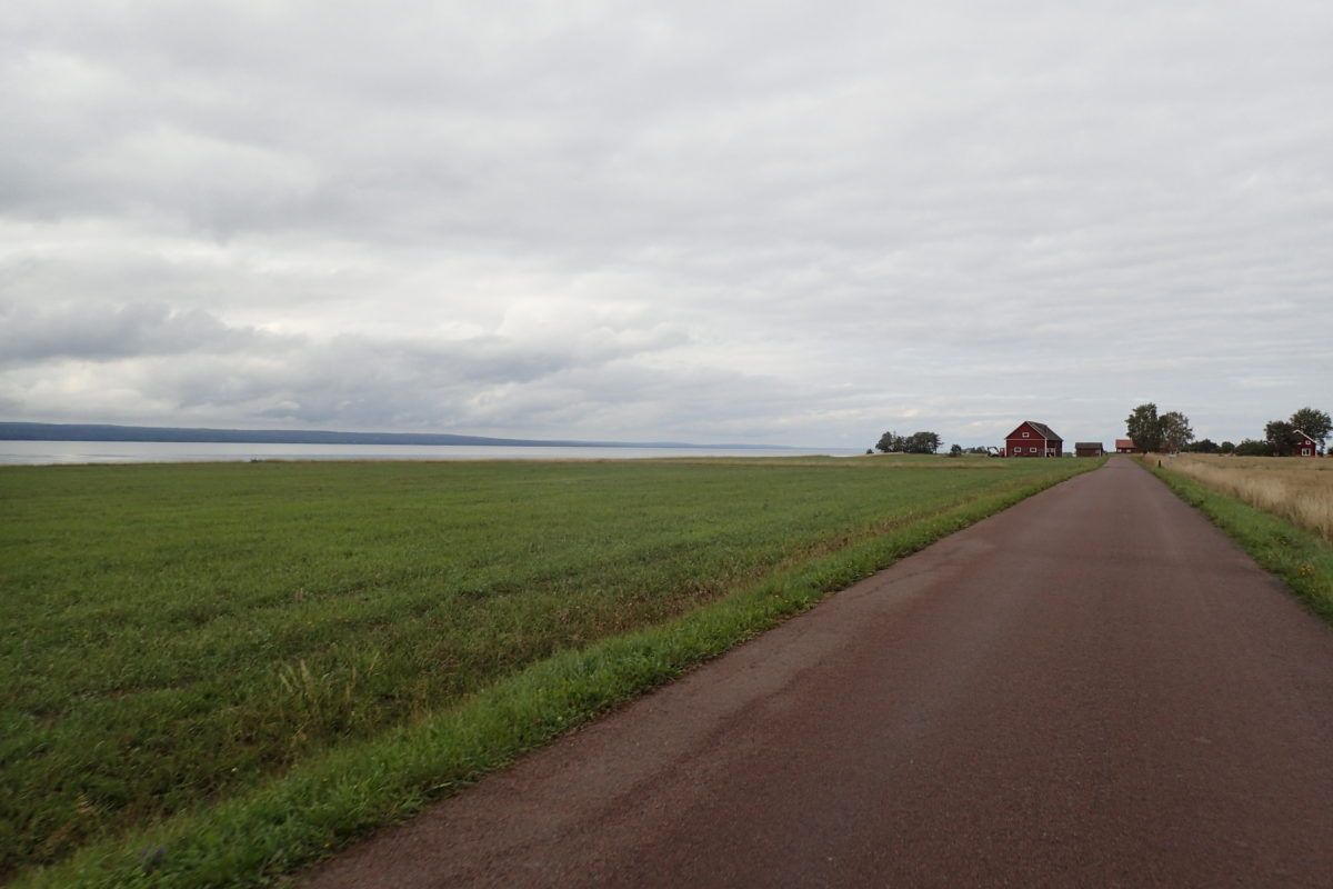 Vista oberta del paisatge des del camí