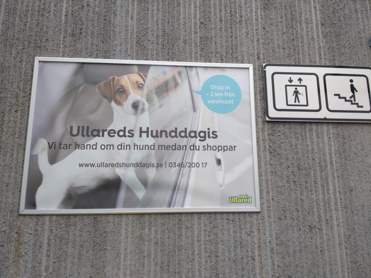 Cartell anunciant la guarderia per gossos