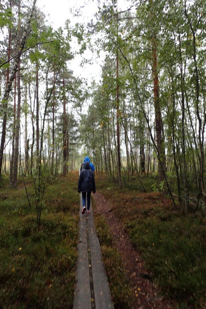Caminant per una pasarel·la de fusta, amb impermeables