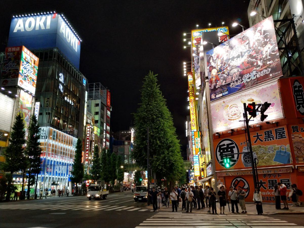 Avinguda d'Akihabara amb edificis lluminosos a banda i banda, de nit