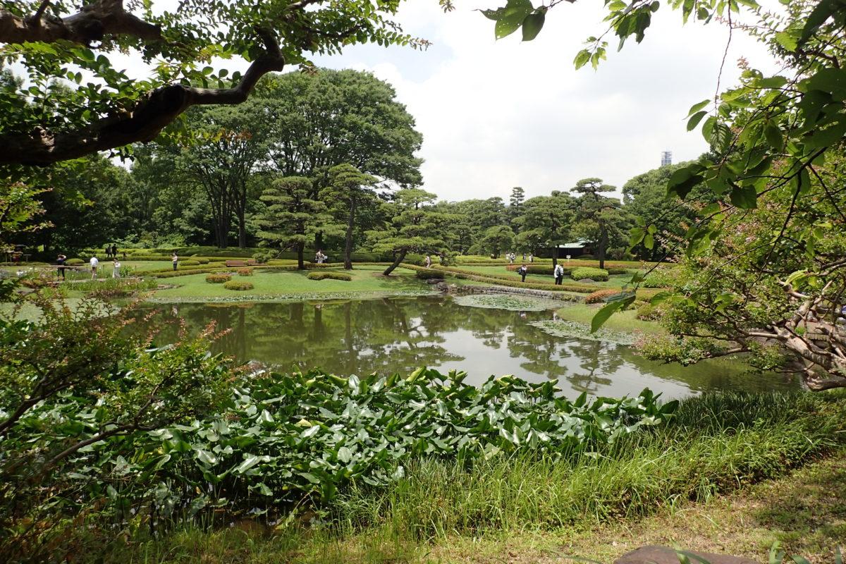 Vista general dels jardins