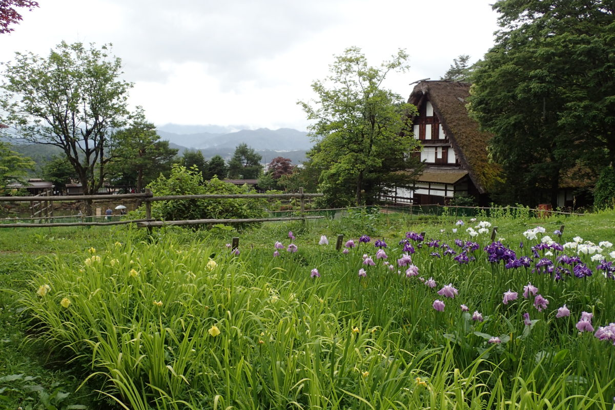 Vista del Hida Folk Village, amb flors en primer terme i una casa al fons