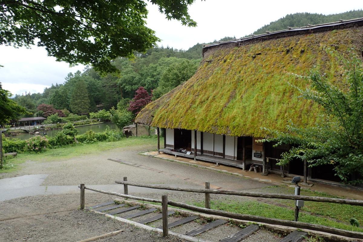 Vista superior d'una casa on s'aprecia la teulada vegetal