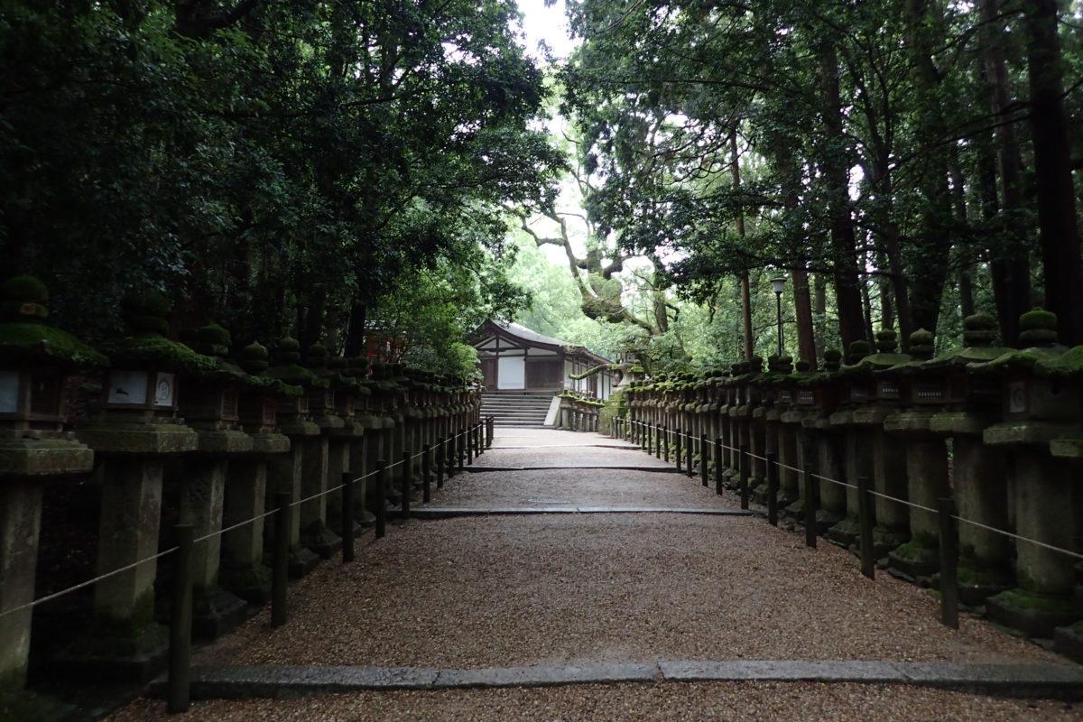 Vista d'un carrer de la zona de temples, completament buit