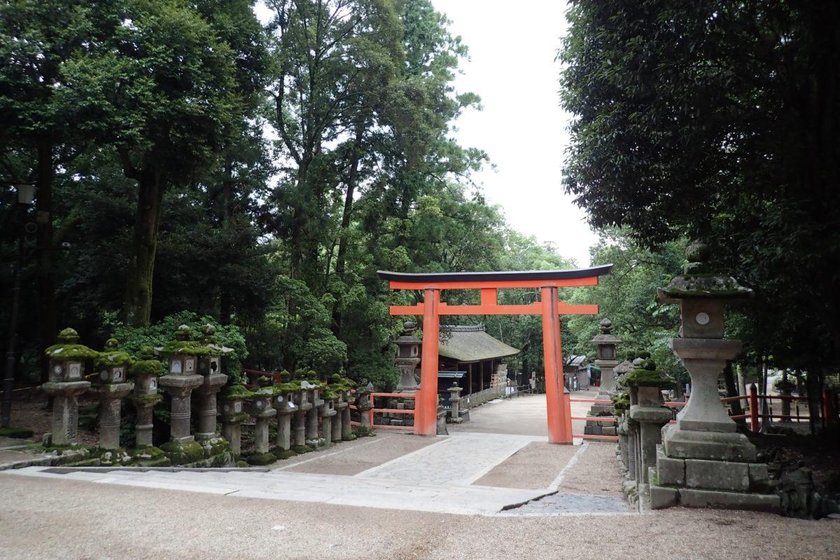 Entradaa la zona de temples amb un tori vermell, completament buida