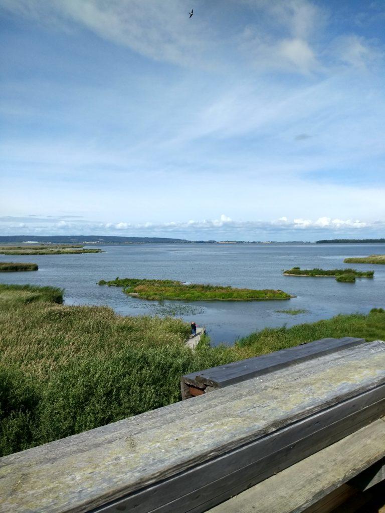 Vista del llac Tåkern