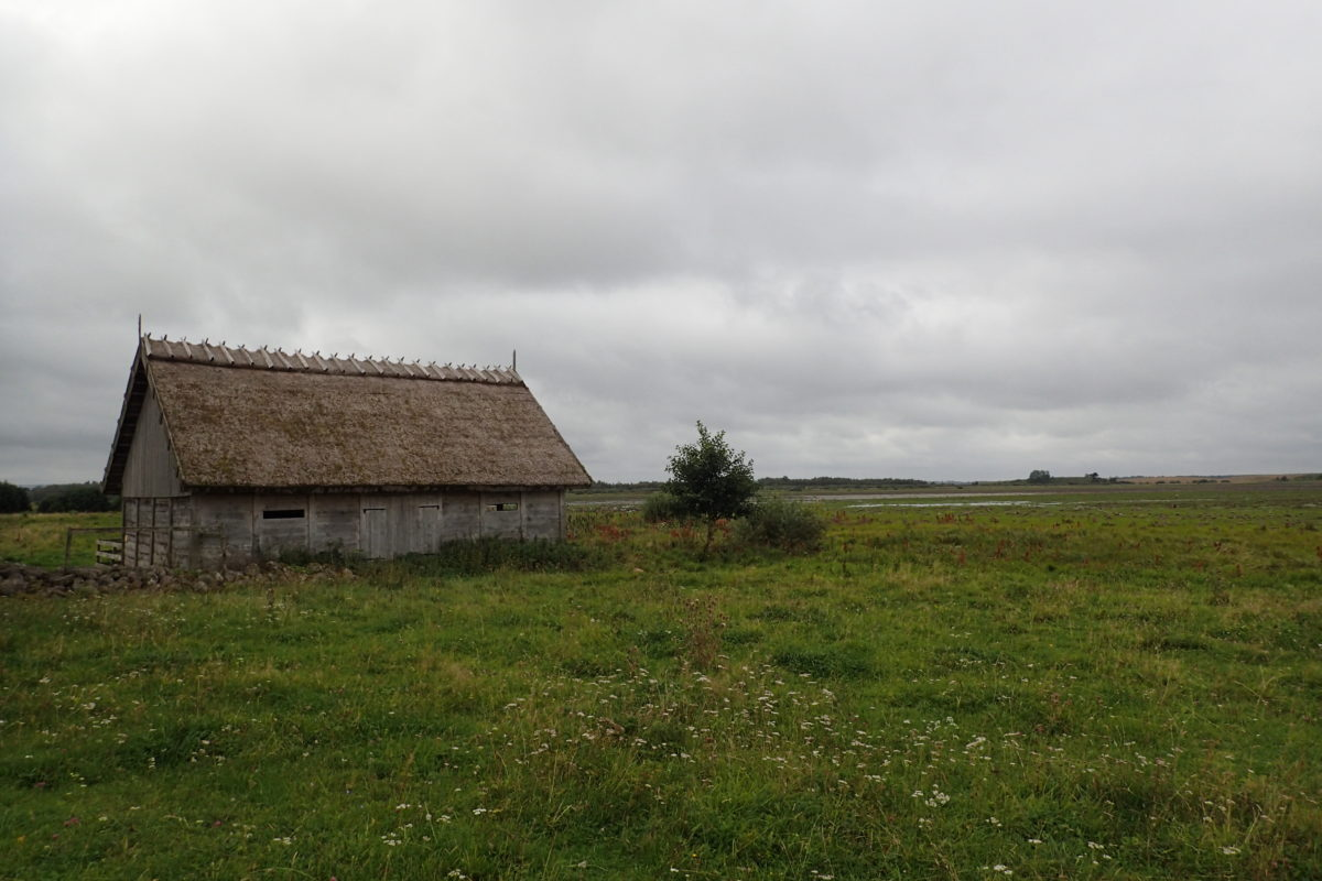 Edificació amb la teulada de palla
