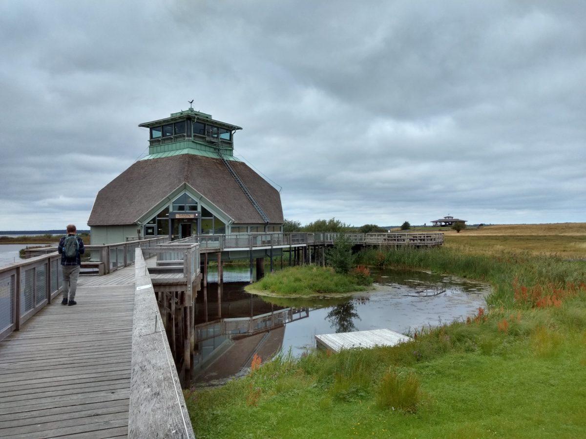 El Naturum del Hornborgasjön amb el paisatge que l'envolta