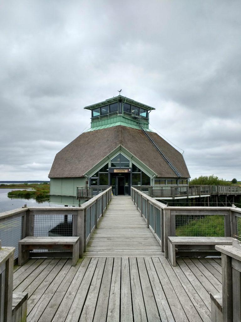 Edifici del Naturum de Honborgasjön