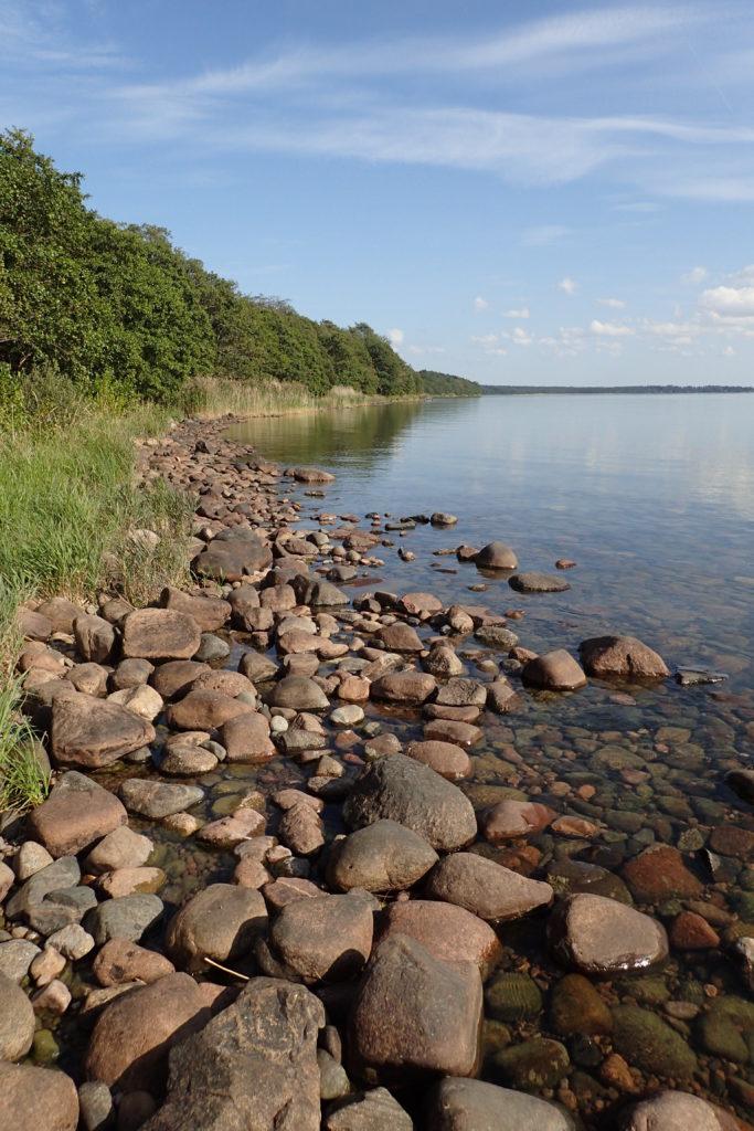 Vista del llac amb pedres en primer terme i vegetació al fons