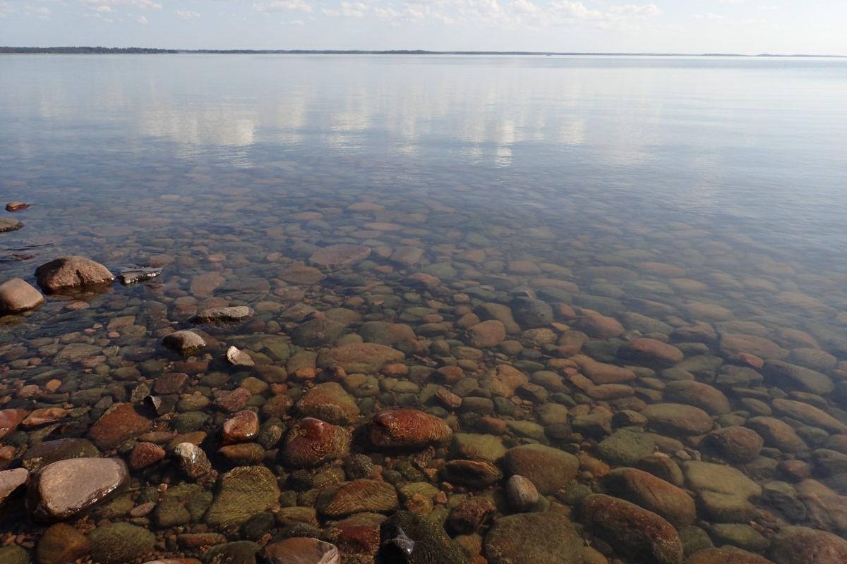 Aigua totalment transparent amb fons de pedres