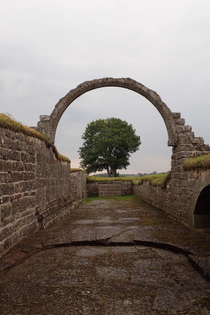 Arc amb un arbre al mig